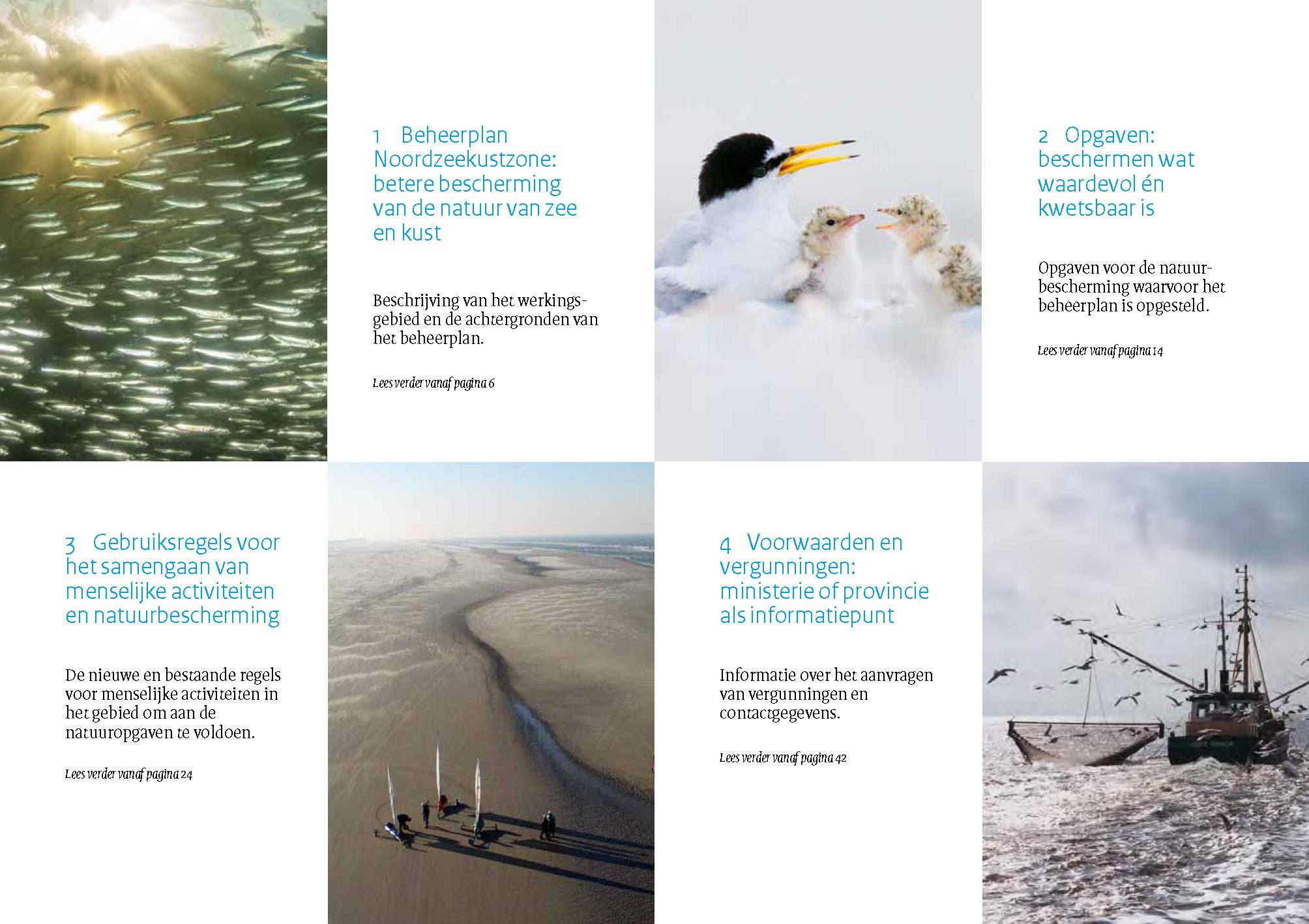 Noordzeekustzone inhoud