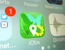 iObs — een iPhone app voor natuurliefhebbers
